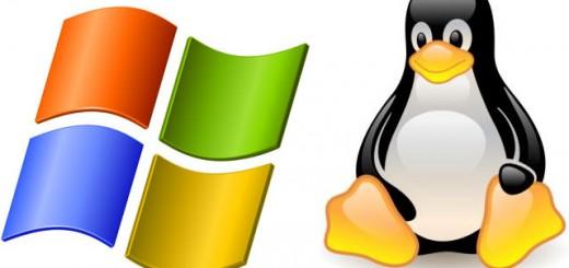 windows-Linux[1]
